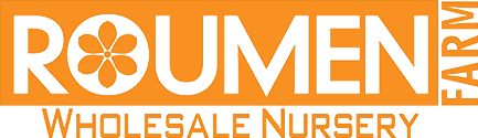 Roumen Farms Wholesale Nursery Logo Image